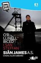 Stori Sydyn: O'r Llinell Biced i San Steffan