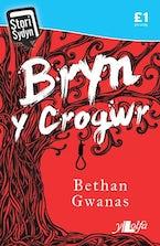 Stori Sydyn: Bryn y Crogwr