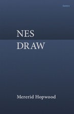 Nes Draw