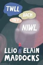 Twll Bach yn y Niwl