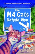 M4 Cats, The