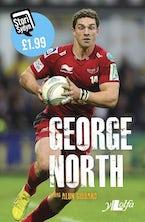 Stori Sydyn: George North