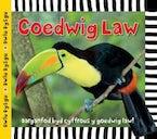Cyfres Dwlu Dysgu: Coedwig Law