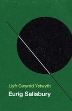 Llyfr Gwyrdd Ystwyth