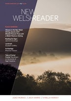 New Welsh Reader 127 (New Welsh Review Autumn 2021)
